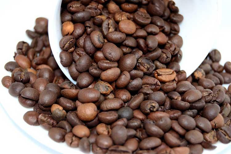 machine-à-café-semi-automatique-cafetiere-expresso-compacte-machine-a-cafe-grain-et-dosette-expresso-sans-machine-machine-à-café-nespresso-machine-à-café-percolateur-machine-à-café-dolce-gusto-machine-à-café-filtre-cafetiere-nespresso-boulanger-darty-nespresso-magimix-machine-expresso-20-bars-cafetiere-malongo-boulanger-nespresso-krups-meilleur-prix-krups-ea8108-black-friday-prix-delonghi-ecam-22.110-b-delonghi-magnifica-occasion