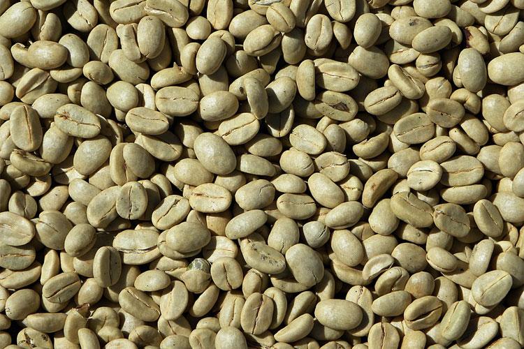 café-vert-achat-comment-préparer-un-café-vert-le-café-vert-capsule-café-vert-en-grain-café-vert-diabète-machine-pour-éliminer-la-graisse-vibration-graisse-100-astuces-pour-maigrir-banane-régime-protéiné-ananas-fait-il-grossir-café-vert-carrefour-café-vert-caféine-grains-de-café-vert-danger-café-vert-prix-acide-chlorogénique-maigrir-chocolat-riche-en-café-vert
